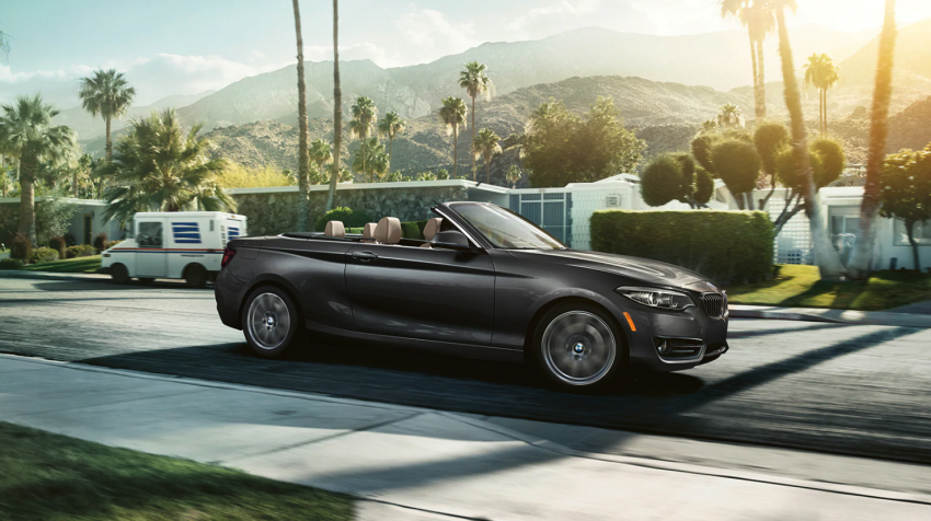BMW 2 Series driving in front of palm trees.