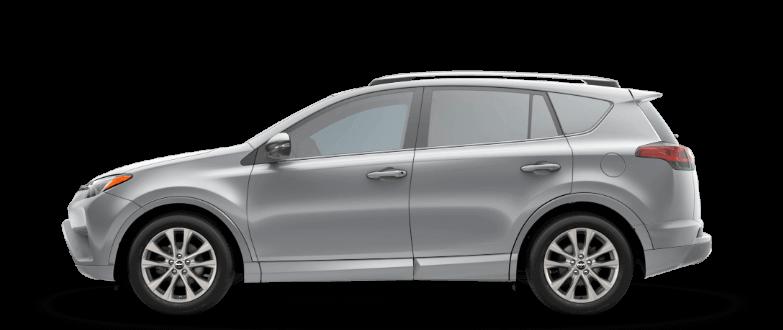 2018 Toyota RAV4 Platinum Trim