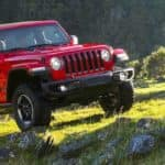 2019 Jeep Wrangler in Field