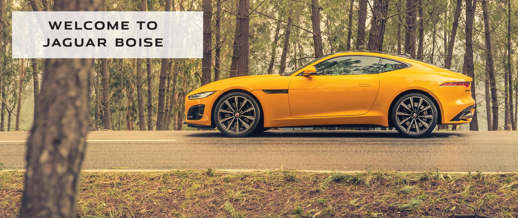 WELCOME TO JAGUAR BOISE. YELLOW JAGUAR F-TYPE DRIVING DOWN ROAD IN WOODS.