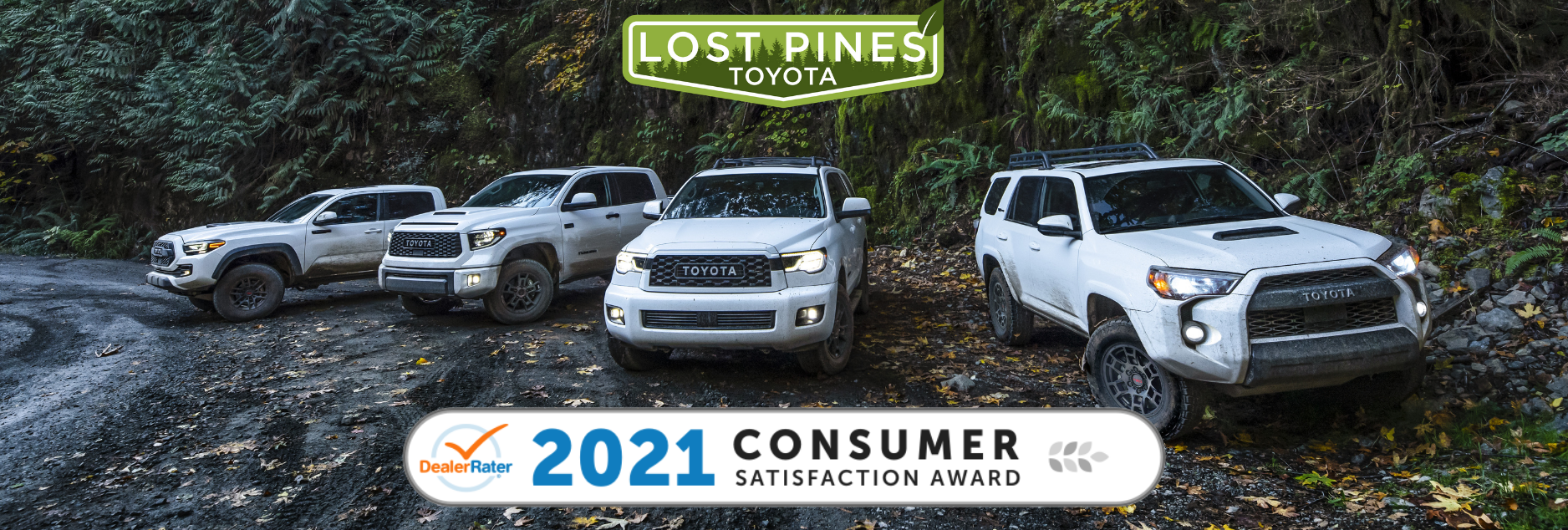 Lost Pines Toyota wins DealerRater Award