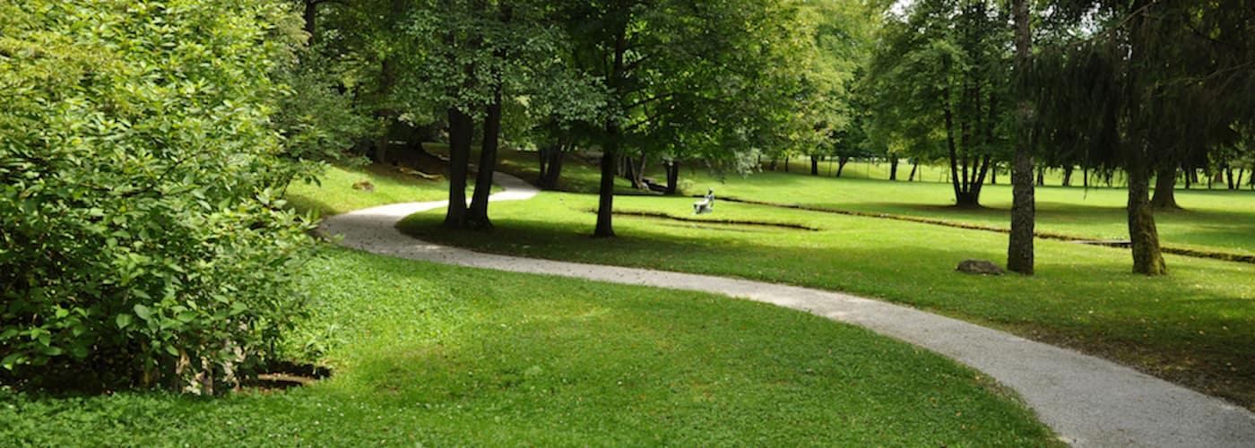 park path in springtime