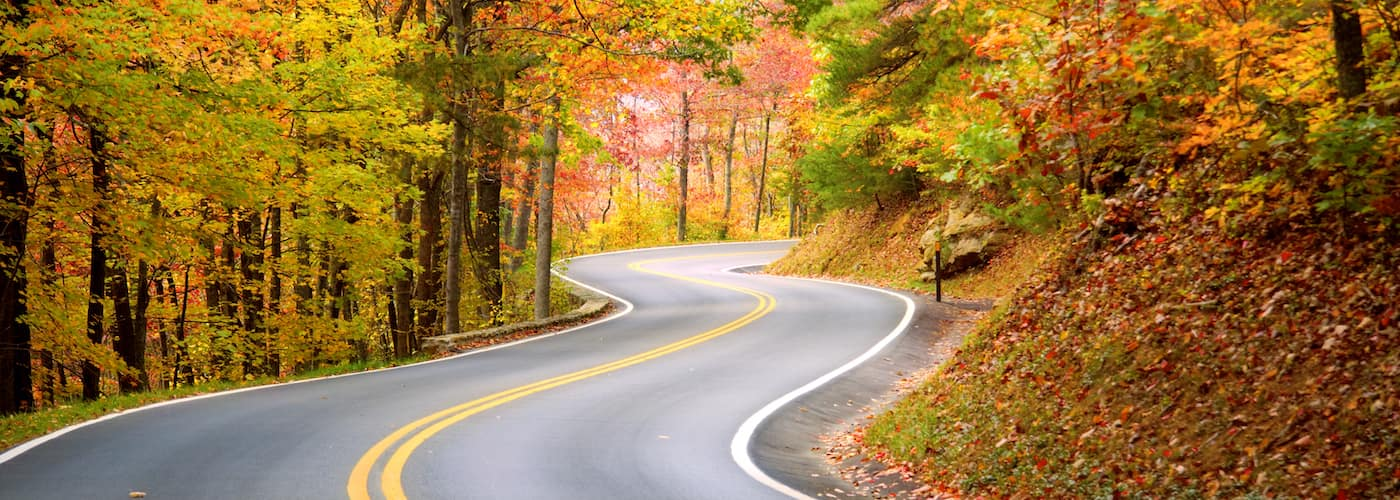 beautiful scenic road in autumn