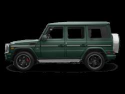 AMG model side