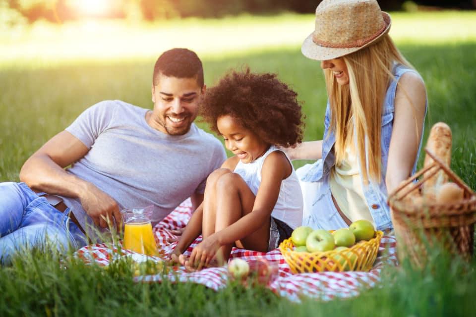 Bring The Family To Picnic In The Park | Safford Kia of Fredericksburg