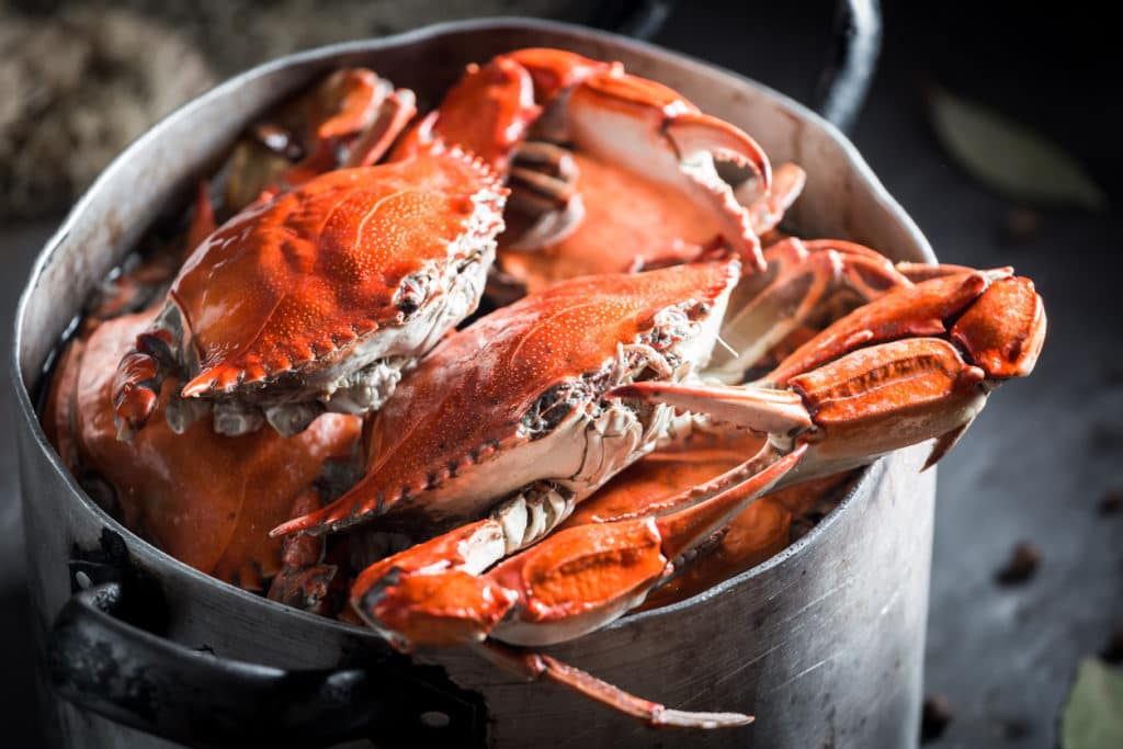 Grab Tickets to the 49th Annual Crab & Beef Feast!