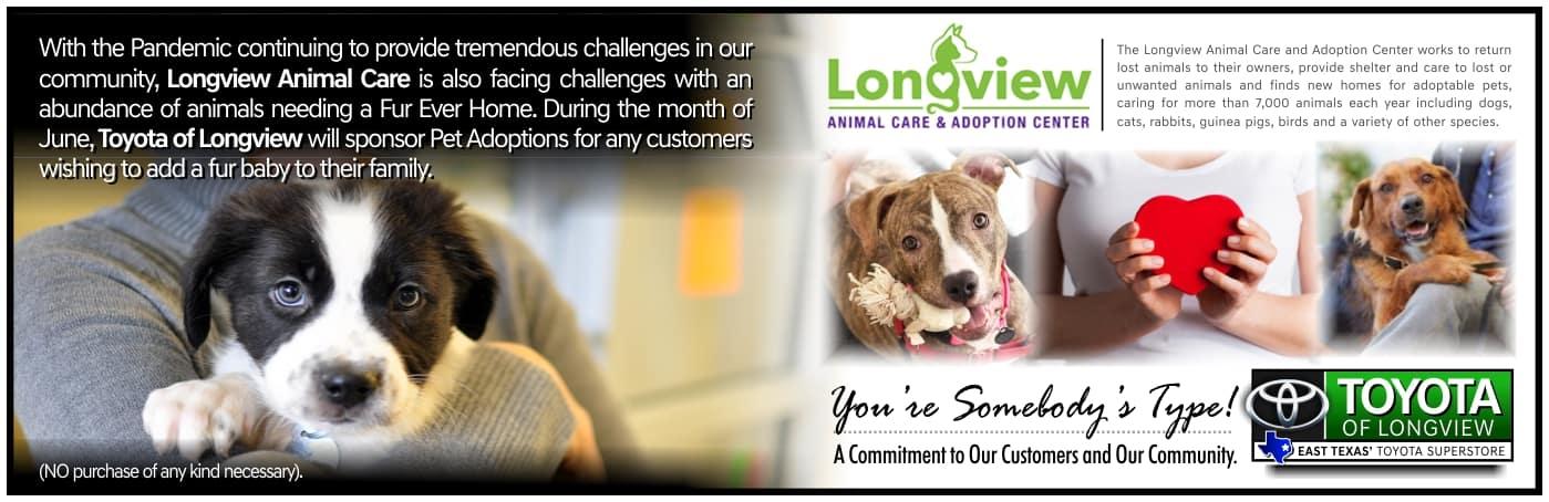 TOL Pet Adoption Website Banner.6-7-21