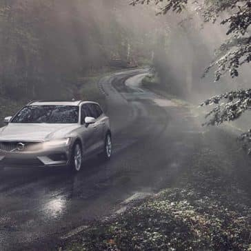 2020 Volvo V60 In The Forest